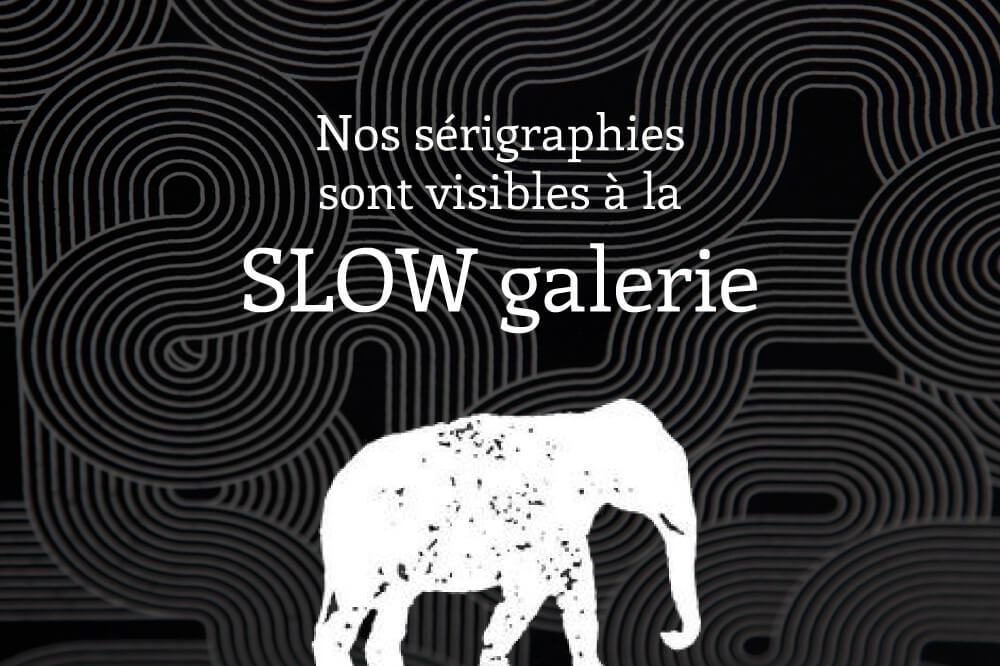 news_2017-01_slow-galerie