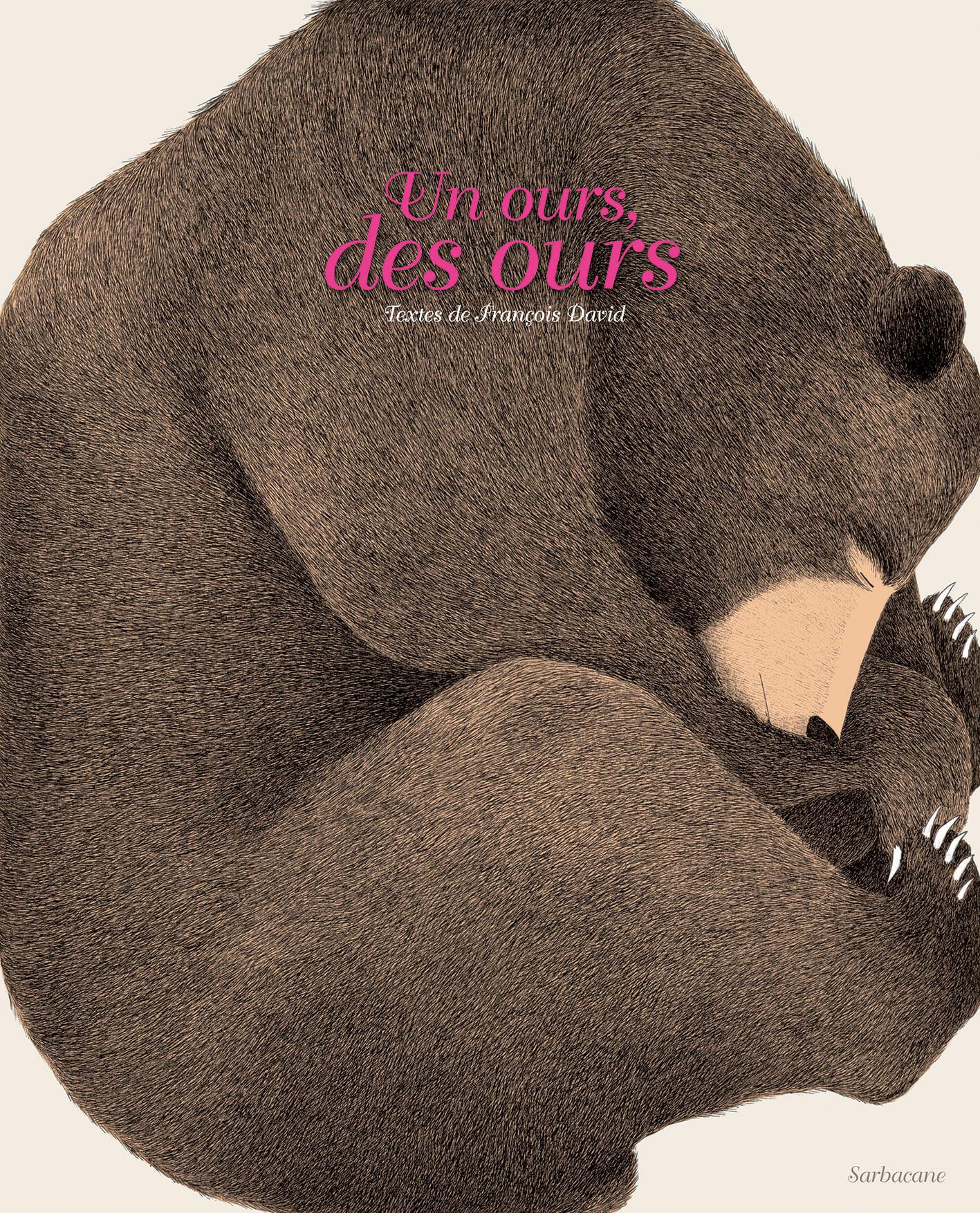biblio_un-ours-des-ours
